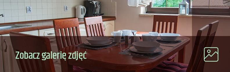 Zobacz galerie kuchnia Apartamentu BelwederSKI